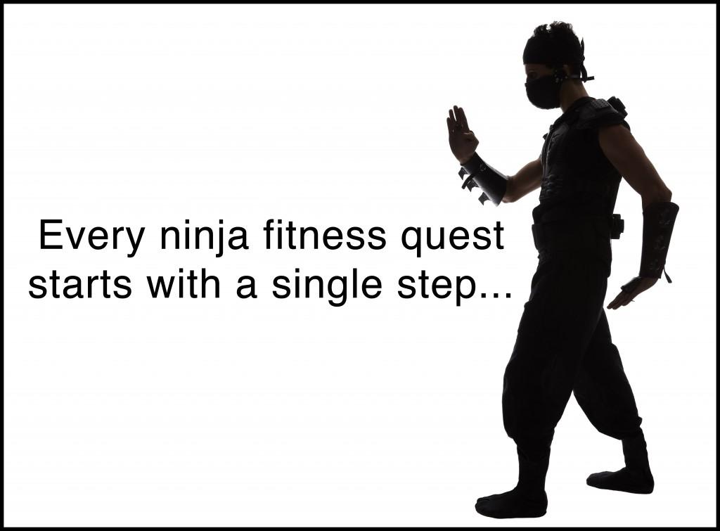 ninja fitness quest